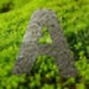 alejcyber's avatar
