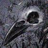 alenaswan's avatar