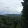 Alexa256's avatar