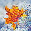 alexgphoto's avatar