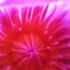 alexiadracul's avatar