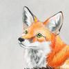 AlexKSFox's avatar