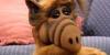 ALFlovers's avatar