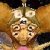 alibajramovski2005's avatar