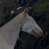 AliciaTheSapphireOgM's avatar