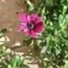 Alies16's avatar