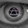 alionv's avatar