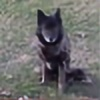alise45647's avatar