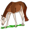 aliteralpinetree's avatar