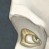 ALonelyMelody's avatar