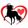 alove4horses's avatar
