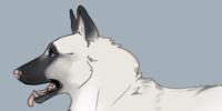 Alpesi-Terelo's avatar