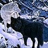 Alphawolfpack123's avatar