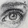 alshah's avatar