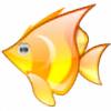 alwaysbeta's avatar
