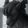 Amaryllex's avatar