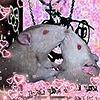 Amazing-Ratzz's avatar