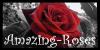 Amazing-Roses's avatar