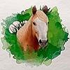 Amber18db's avatar