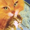 Ambers-Eyes's avatar