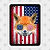 AmericanaFox's avatar