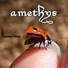 Amethys's avatar