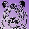 amethystigerpoet's avatar