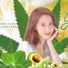 Aminachalakn's avatar