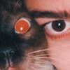 amiraakilra's avatar