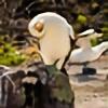 amorrison12's avatar