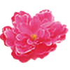 Amu278's avatar