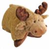 amyq52's avatar