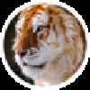 anajaden's avatar