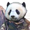 anarupanda's avatar