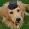 AndersHu's avatar