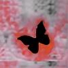 andipunk's avatar