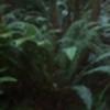 AndriaMorningstar's avatar