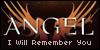 Angel--Series--Love