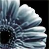 angelwhispers21's avatar