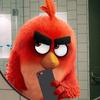 AngryBirdsGumball27's avatar