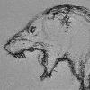 Animalistic-Artworks's avatar