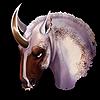 Animalka1's avatar