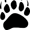 AnimalKingdomTCG's avatar