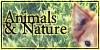 Animals-Nature's avatar