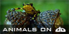 Animals-on-DA's avatar