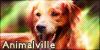 Animalville