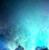 animefan12oo's avatar