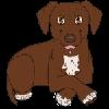 anixhe's avatar