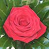Anka88's avatar