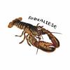 annaisalobster's avatar